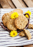 Homemade oatmeal peanut butter cookies Royalty Free Stock Photos