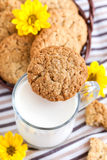 Homemade oatmeal peanut butter cookies Stock Photo