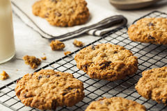 Homemade Oatmeal Raisin Cookies Royalty Free Stock Images