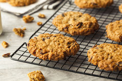 Homemade Oatmeal Raisin Cookies Royalty Free Stock Photo