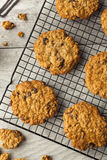 Homemade Oatmeal Raisin Cookies Stock Photos