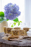 Homemade oats soap Stock Image