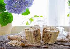 Homemade oats soap Stock Images