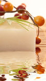 Homemade Olive Oil Bar Of Soap Stock Image