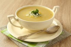 Homemade onion soup with celery and blue cheese Royalty Free Stock Photo
