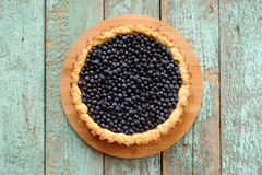 Homemade open blueberry tart with fresh organic wild blueberries Royalty Free Stock Photo