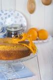 Homemade orange sponge cake Royalty Free Stock Photos