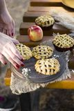 Homemade organic apple hand pies, cinnamon stciks and apples, woman holds a mini pie in her hands stock photography