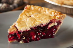 Homemade Organic Berry Pie Royalty Free Stock Images