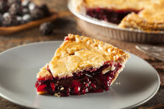 Homemade Organic Berry Pie Royalty Free Stock Photos
