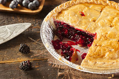 Homemade Organic Berry Pie Royalty Free Stock Photo