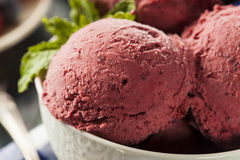 Homemade Organic Berry Sorbet Ice Cream. Ready to Eat royalty free stock photo