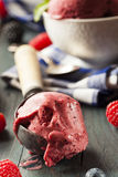 Homemade Organic Berry Sorbet Ice Cream Royalty Free Stock Images