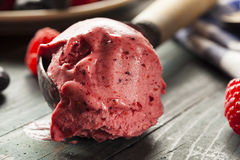 Homemade Organic Berry Sorbet Ice Cream Royalty Free Stock Photo