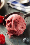 Homemade Organic Berry Sorbet Ice Cream. Ready to Eat Stock Image