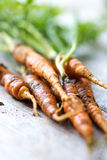 Homemade organic carrots Royalty Free Stock Images