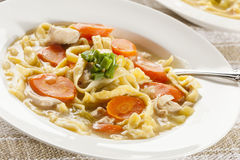Homemade Organic Chicken Noodle Soup Stock Photography