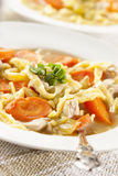 Homemade Organic Chicken Noodle Soup Royalty Free Stock Photography