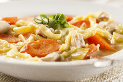 Homemade Organic Chicken Noodle Soup Royalty Free Stock Image