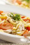 Homemade Organic Chicken Noodle Soup Royalty Free Stock Photo