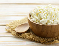 Homemade organic cottage cheese Royalty Free Stock Photo