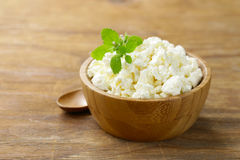 Homemade organic cottage cheese Stock Images