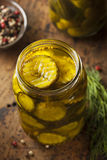 Homemade Organic Crunch Green Pickles Stock Photo