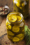 Homemade Organic Crunch Green Pickles Stock Images
