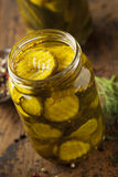 Homemade Organic Crunch Green Pickles Royalty Free Stock Images