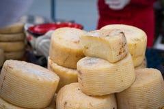 Homemade organic farm cheese at the street food fair. Royalty Free Stock Photo