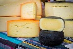 Homemade organic farm cheese at the street food fair Stock Photography