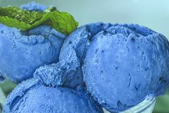 Homemade Organic Fruit Blue Berry Ice Cream with Mint stock photography