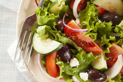 Homemade Organic Greek Salad Royalty Free Stock Image