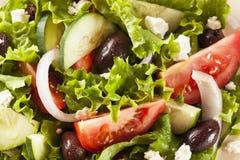 Homemade Organic Greek Salad Stock Photos