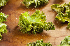 Homemade Organic Green Kale Chips Stock Images