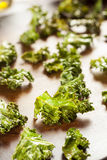 Homemade Organic Green Kale Chips royalty free stock images