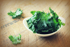 Homemade Organic Green Kale Chips with salt and oil Stock Images