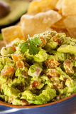 Homemade Organic Guacamole and Tortilla Chips Royalty Free Stock Images