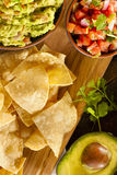 Homemade Organic Guacamole and Tortilla Chips Royalty Free Stock Photography
