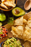 Homemade Organic Guacamole and Tortilla Chips Stock Image