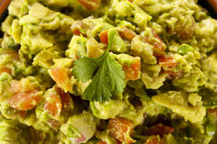 Homemade Organic Guacamole and Tortilla Chips Royalty Free Stock Photo
