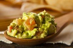 Homemade Organic Guacamole and Tortilla Chips Stock Photography