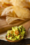 Homemade Organic Guacamole and Tortilla Chips Stock Photo
