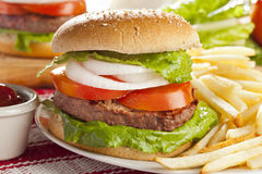 Homemade Organic Hamburger Royalty Free Stock Photos