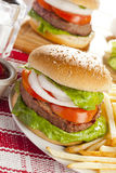 Homemade Organic Hamburger Stock Photos
