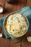 Homemade Organic Mashed Cauliflower Stock Images