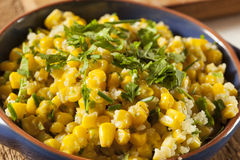 Homemade Organic Mexican Corn Dish Stock Images