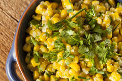 Homemade Organic Mexican Corn Dish Royalty Free Stock Images