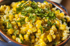 Homemade Organic Mexican Corn Dish Royalty Free Stock Photos