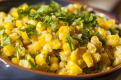 Homemade Organic Mexican Corn Dish Stock Photography